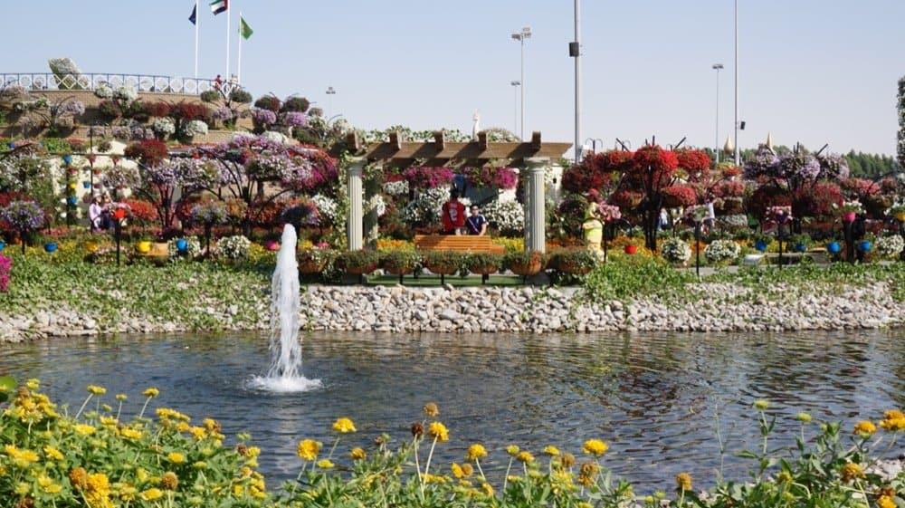 miracle garden dubai1019resized