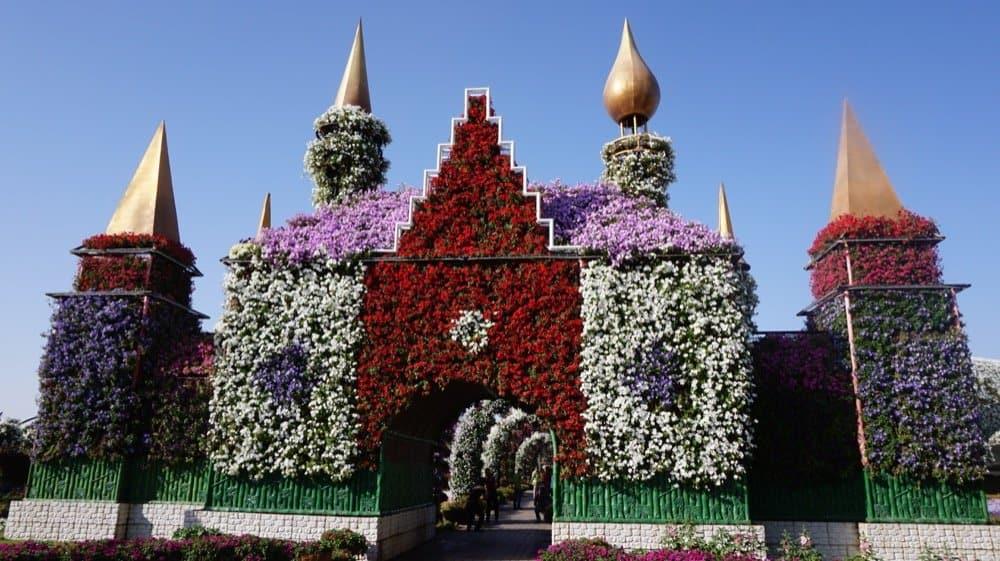 miracle garden dubai1122resized