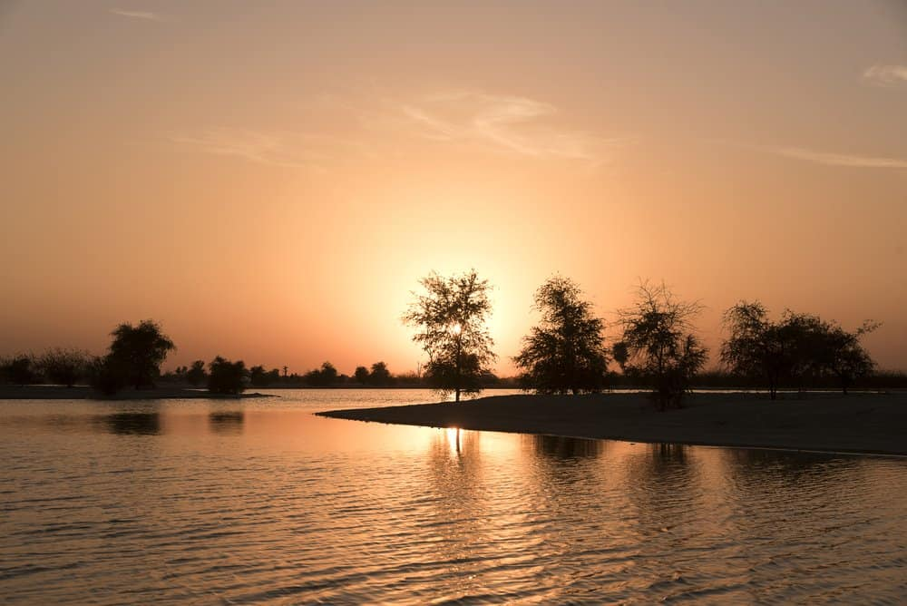 The Best Places to Experience a Magical Sunset in Dubai